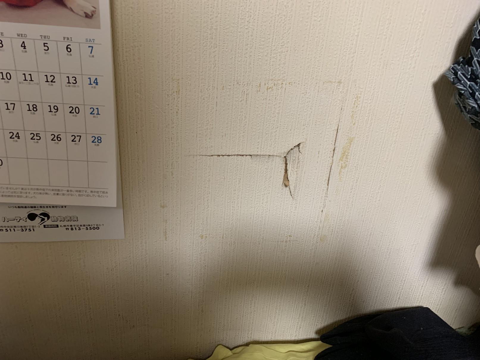 壁穴の補修