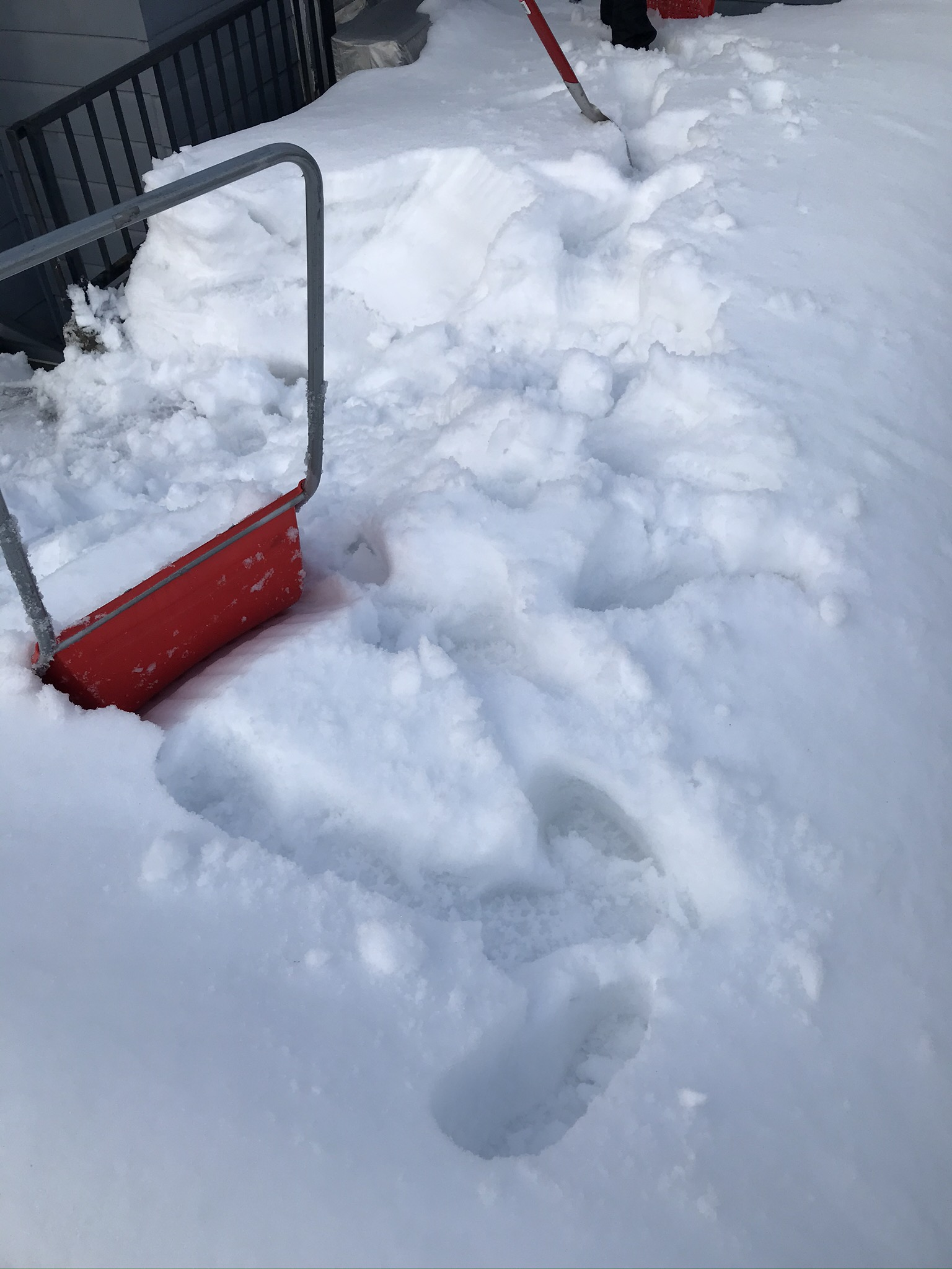 屋上の除雪作業